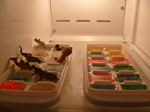 Add food coloring to ice cube trays, small animals, gems or toys for fun surprise.