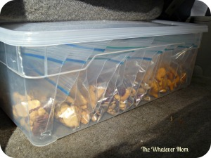 Keep snacks in car to ward off meltdowns on the road.