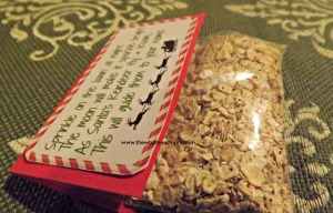 DIY Magic Reindeer Food