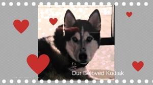 Our Beloved Kodiak